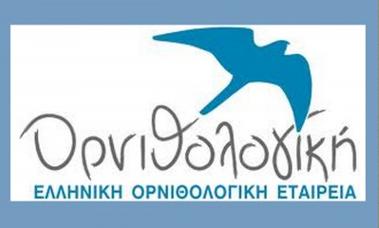 Ενημερωνόμαστε από τους μαθητές του Ε1 για την Ελληνική Ορνιθολογική Εταιρεία και το WWF!