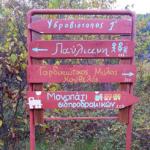 παυλιανη13
