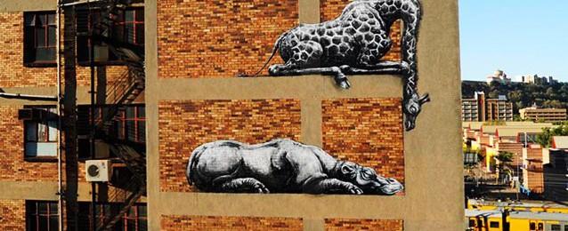 Αφρικανικά ζώα κοιμούνται στον τοίχο κτηρίου στο Γιοχάνεσμπουργκ