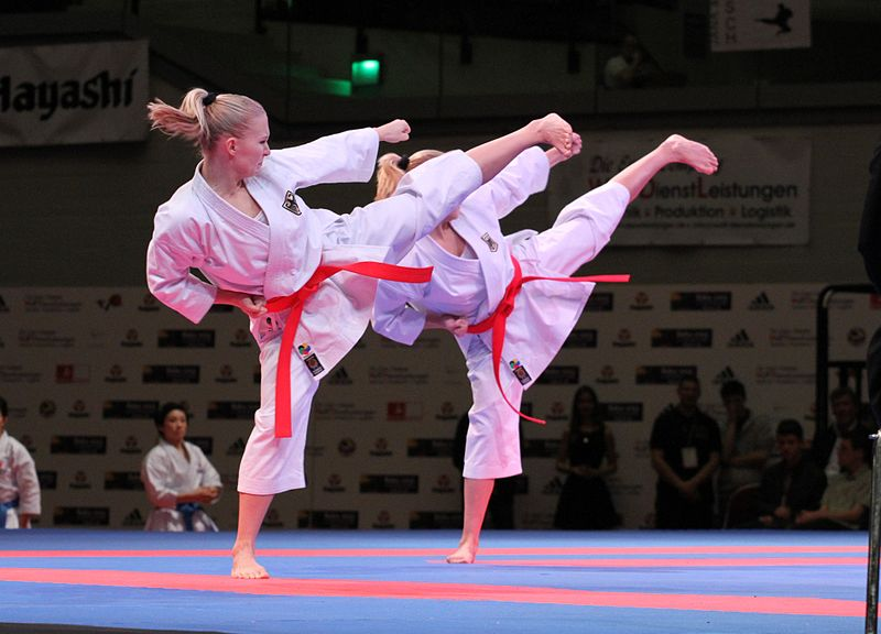 Karate_WM_2014_(2)_173