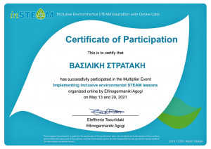 inSTEAM_certificate (93)_page-0001