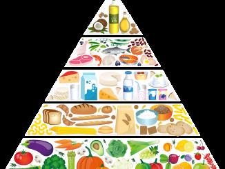 food-pyramid-5329204_1280