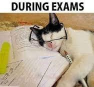 exam 5