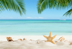 Laeacco-Tropical-Sea-Beach-Starfish-Shell-Coral-Sand-Palm-Tree-Holiday-Scenic-Photo-Background-Photography-Backdrop