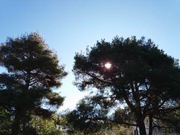Tρίτο Τεύχος: η Γραφίς στην Κέρκυρα