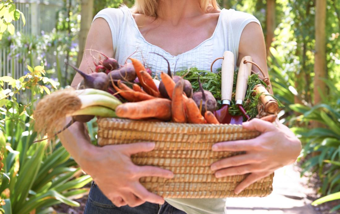 woman-carrying-basket-full-of-veg