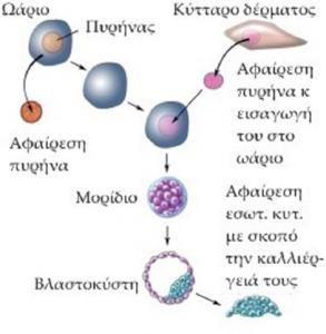 βιοηθική 1