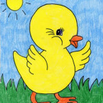 Baby-Chick-pic