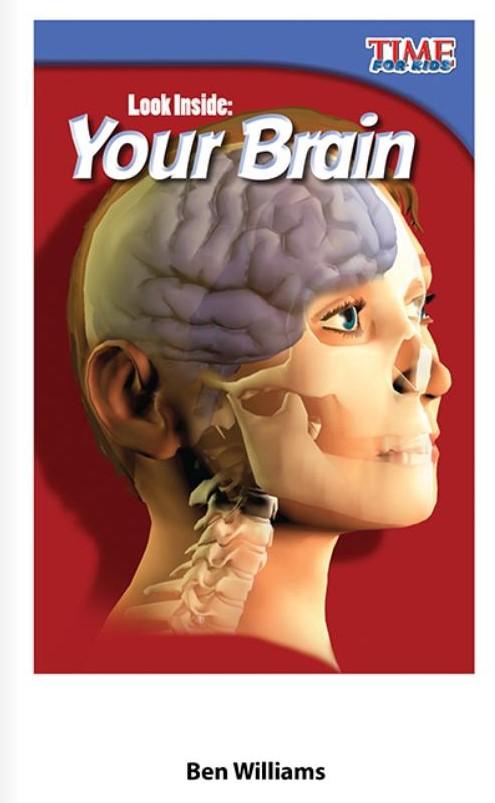 look inside your brain 1