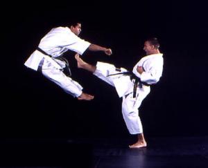 971720-07-09-11-07-50_karate1